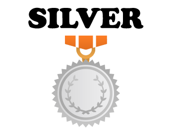 Program fidelizare silver StoneMania