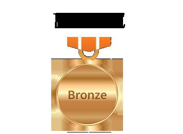 Client Bronze StoneMania Bijou