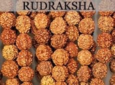 Bratari originale rudraksha